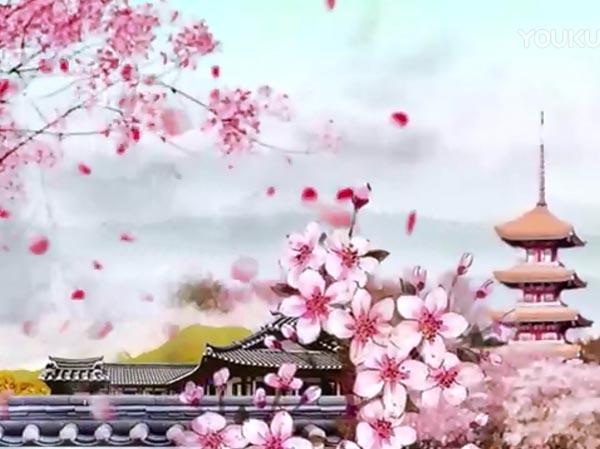 东湖故事之樱花园